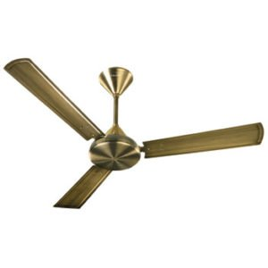 Ceiling Fan ( Load More Products )